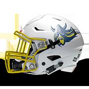 Miami Vikings