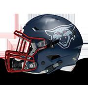 Seattle Wildcats